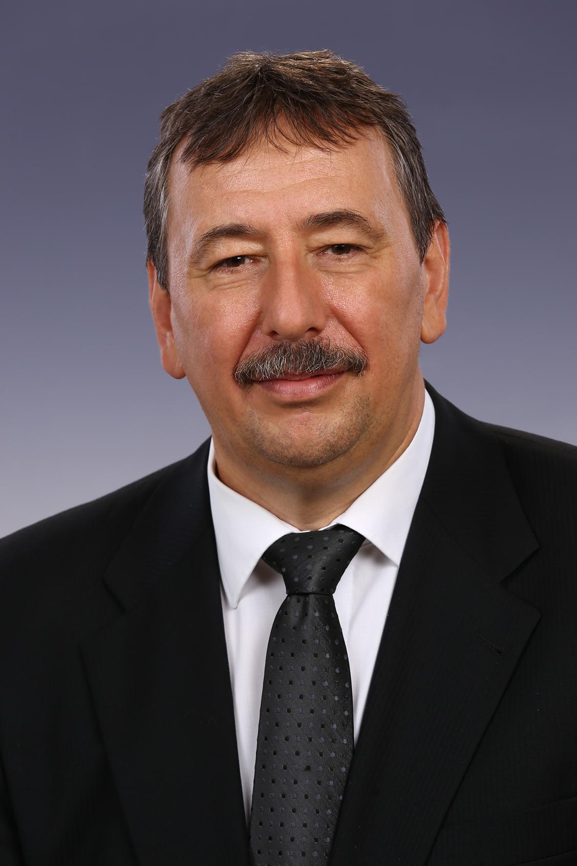 Panyi György